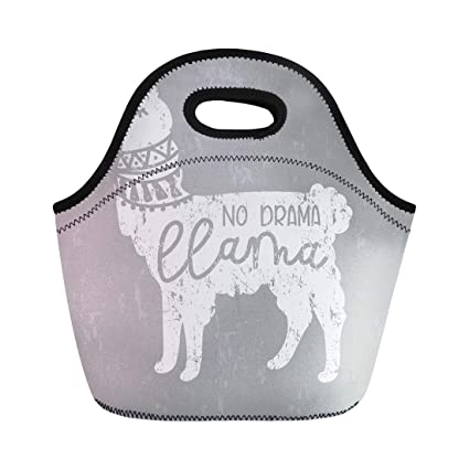 d810111bd5c4 Amazon.com: Semtomn Lunch Tote Bag No Drama Llama Cute and Effect ...