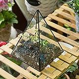 Modern Handmade Pyramid Glass Geometric Terrarium Tabletop Decor Flower Pot for Moss Fern Succulent Air Plant Balcony Display Planter Vase Container Black 7.4inch Height