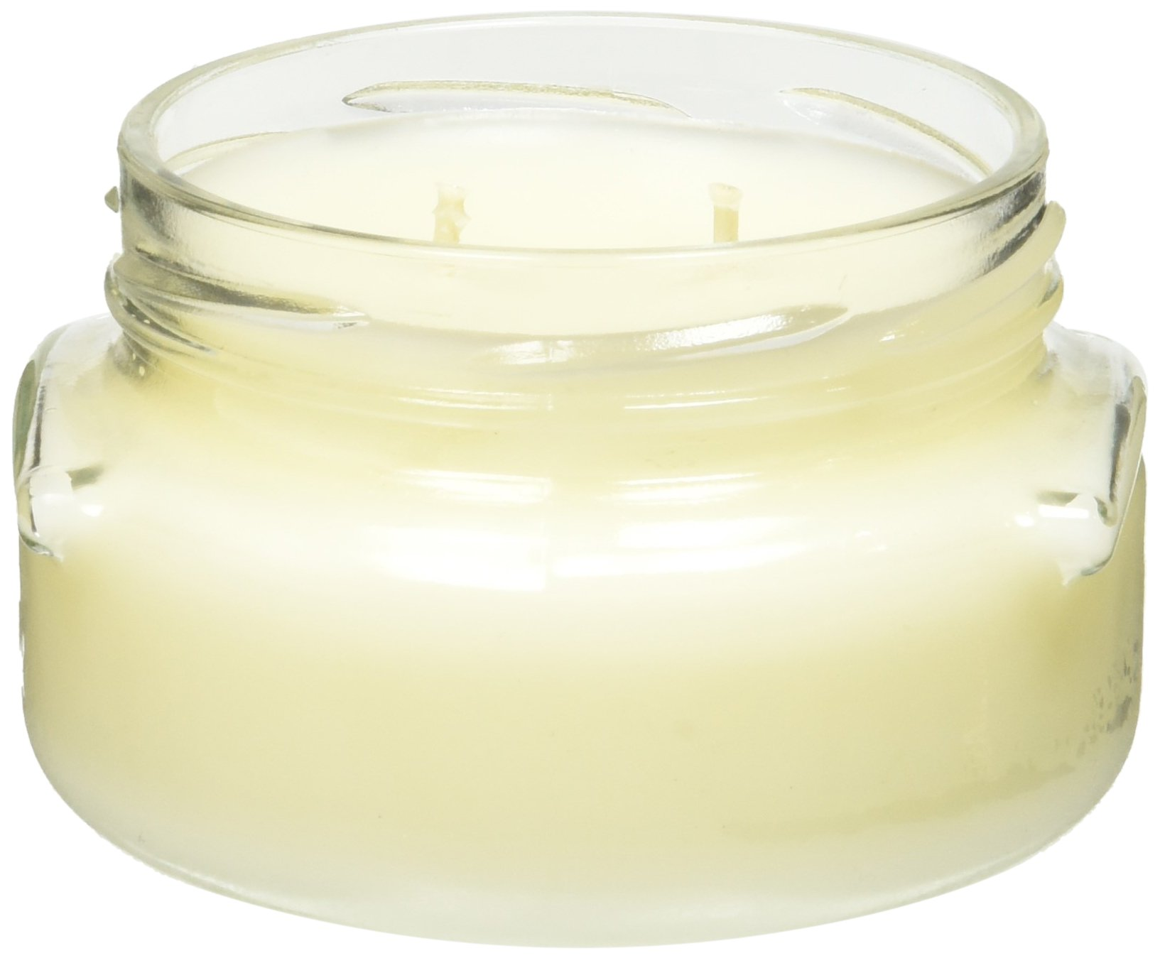 TYLER 2 Wick Diva Scented Candle, 11 oz by Tyler