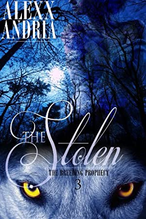 book cover of The Stolen
