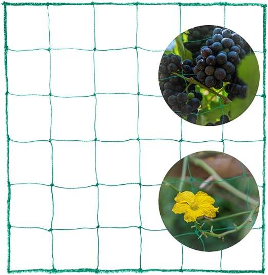 ECHOAN Red de Enrejado Jardín, Plantas trepadoras Red de, Red de Apoyo Red para Verduras Frutas Pepino Tomates Plantas de Vid: Amazon.es: Jardín