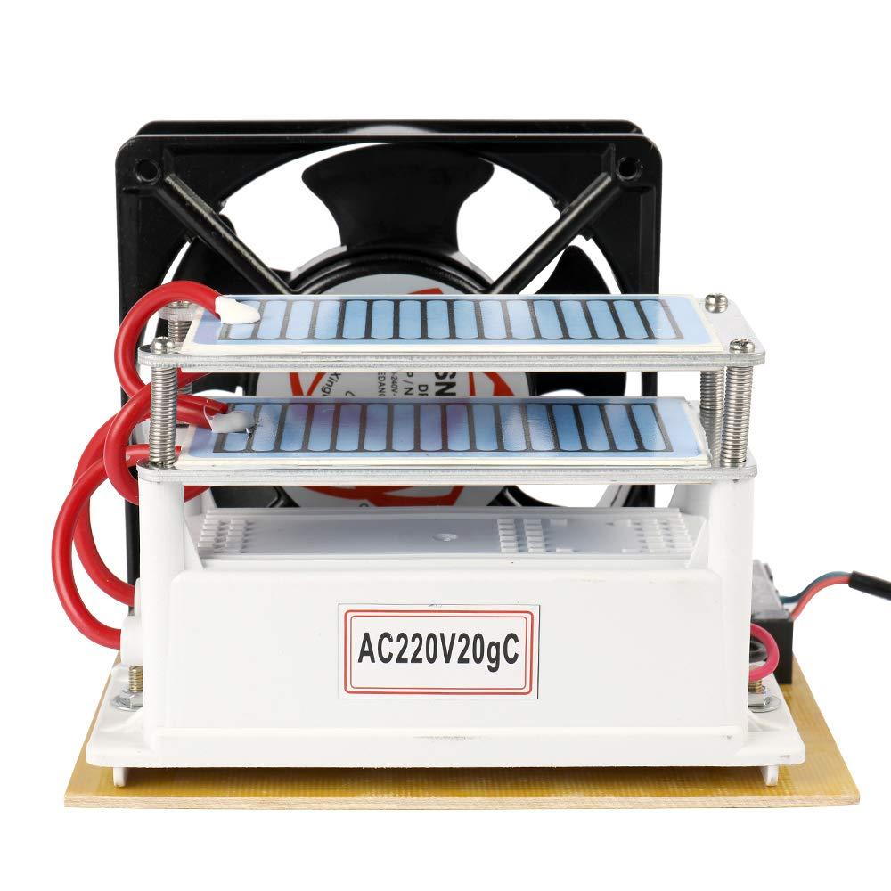 Leepesx - Generador de ozono portátil (20 g/h, 220 V): Amazon.es ...