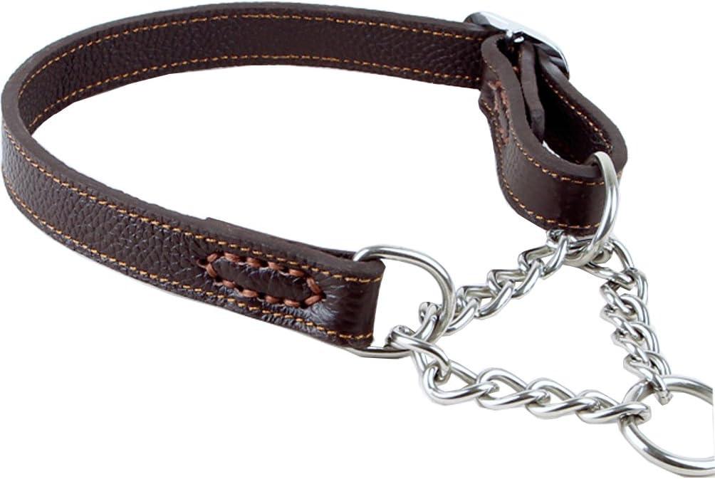 Tellpet Leather Dog Martingale Choke Collar