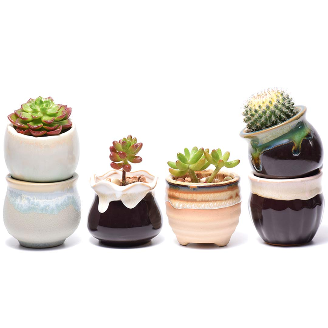 Potaroma Succulent Pots, 6 Pack Premium Ceramic Plant Pots with Drainage, FlowingGlaze Pots for Plants. Succulent-Pots-Planter-Flower-Plants