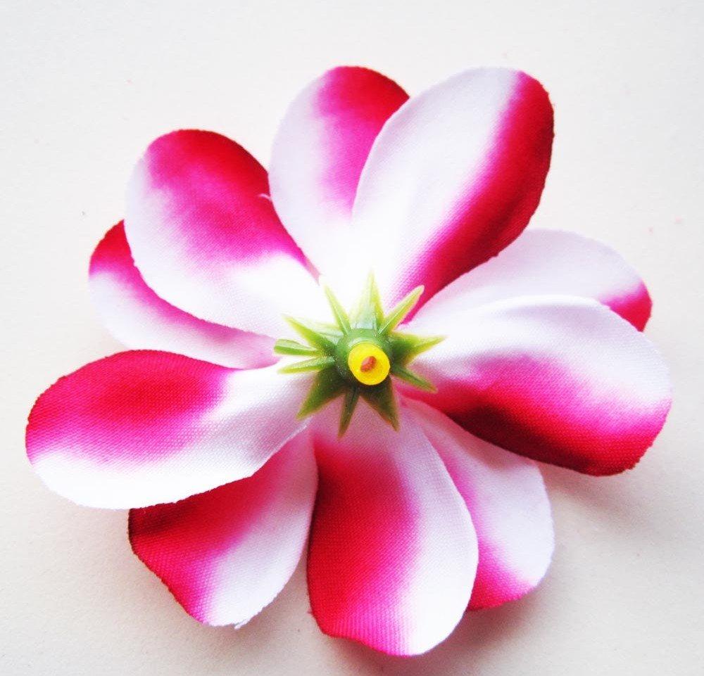 Amazon 12 Red White Hawaiian Plumeria Frangipani Silk Flower