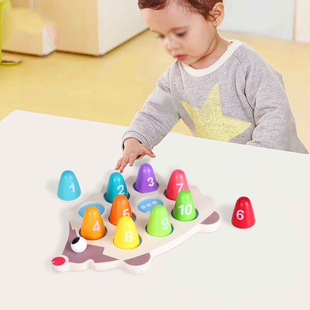 FTVOGUE Nombre et Jouets de comptage /éducatifs en Bois de Bricolage h/érisson Bricolage Correspondant Jouets math/ématiques pour Enfants