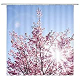 Pink and Blue Shower Curtain AMHNF Shower Curtain Blue Sky Peach Flower Pink Natural Landscape Sunshine Artistic Simple Bathroom Decor Accessories Hanging Curtains Waterproof Polyester Fabric 70x70Inches Home