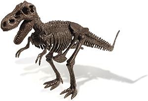 Uncle Milton Dr. Steve Hunters-Dino Dig Excavation Kit - T. Rex - 13Piece - Scientific Educational Toy