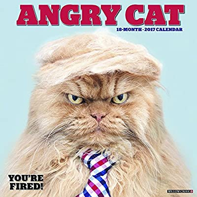 2018 Angry Cat Wall Calendar