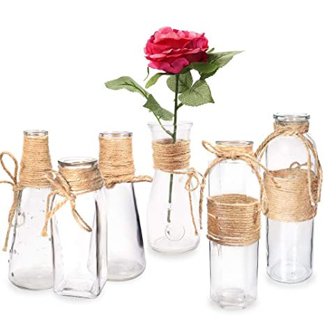 225 & Habbi Glass Vases Set of 6 Clear Glass Flower Vase with Rope Design for Home Decration