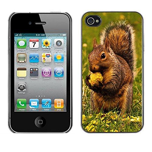 Omega Case PC Polycarbonate Cas Coque Drapeau - Apple iPhone 4 / 4S ( Brown Squirrel & Nut )