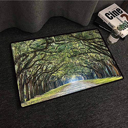 (Forest Green Woodland Country Decor Interior Door mat Tree Branches and Leaves on an Impressionist Road Scene Landscape Primitive Durable W35 xL47 )