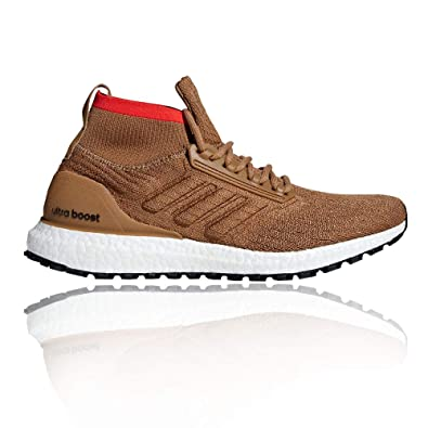 81d533dd9ef44 adidas Ultraboost All Terrain - AW18  Amazon.co.uk  Shoes   Bags