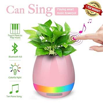 Ascension ® Music Flowerpot, Smart Plant pots, Touch Music Plant Lamp with Rechargeable Wireless Bluetooth Speaker and LED Night Light (Pink)