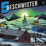 Der Schatten im ewigen Eis (5 Geschwister 19) | Tobias Schier