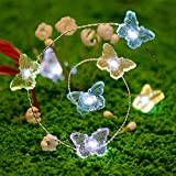 Summer Wedding Twinkle Lighting, Butterfly String Lights 10 ft Silver Wire 40 LEDs with Remote for Indoor, Covered Outdoor, Holiday Parties, Pub, Bar, House, Garden, Patio Plants Shelf Decorative