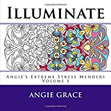 Illuminate (Angie's Extreme Stress Menders Volume 5)