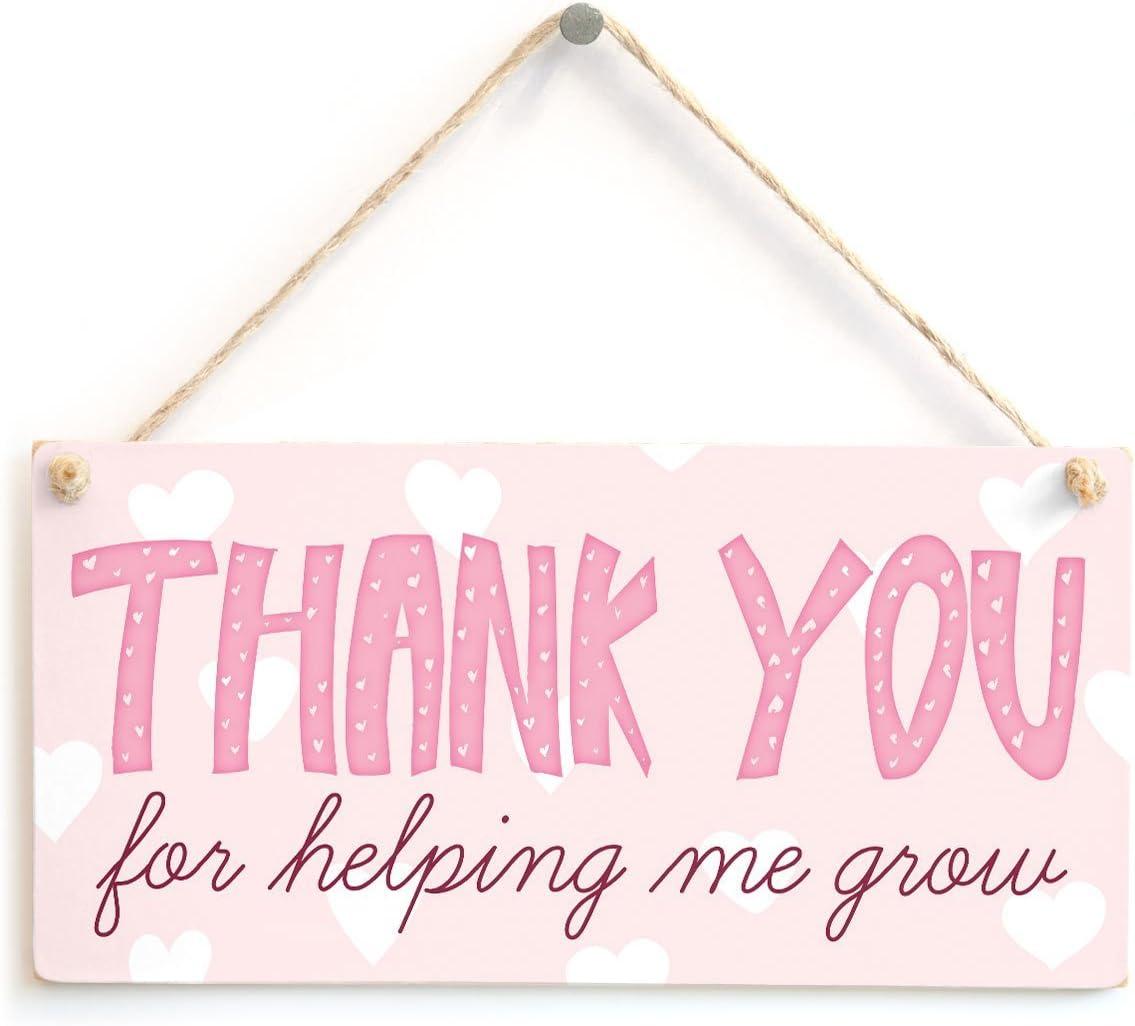 MEIJIAFEI 저를 돕기 위해 감사 합니다-사랑 스러운 감사 당신은 CARER 또는 감사 선생님 선물 플라크 10X5