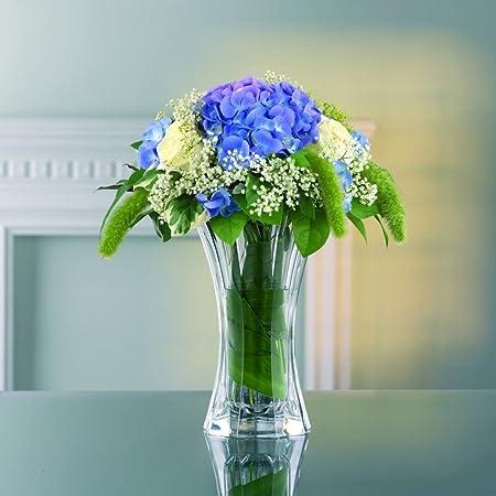 Gl Vase Amazon Ca on amazon wallets, amazon wine decanter, amazon garden stools, amazon frames,