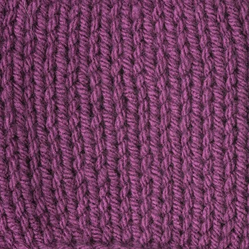 Caron 99543 One Pound Yarn-Purple, Multipack of 4, Pack