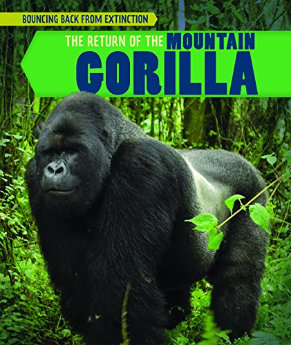 The Return of the Mountain Gorilla (Bouncing Back from Extinction)