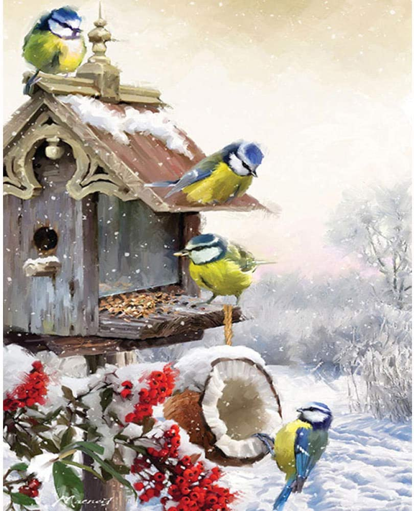 luckykyky 5D Diamond Painting Mosaic DIY Kit Cold Winter Birds Embroidery Scenery Cross stitch Embroidery Crafts Decoration Full Canvas Full Drill-Round Drill 40x50cm