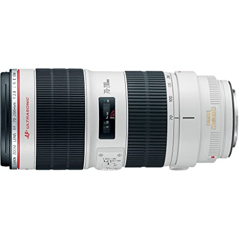 The 8 best canon ef 70 200 f 2.8 l is usm lens