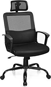 Giantex Mesh Office Chair, High Back Office Chair with Lumbar Support, Swivel Computer Task Chair, Adjustable Armrests, Height and Headrest Ergonomic Desk Chairs (Black)