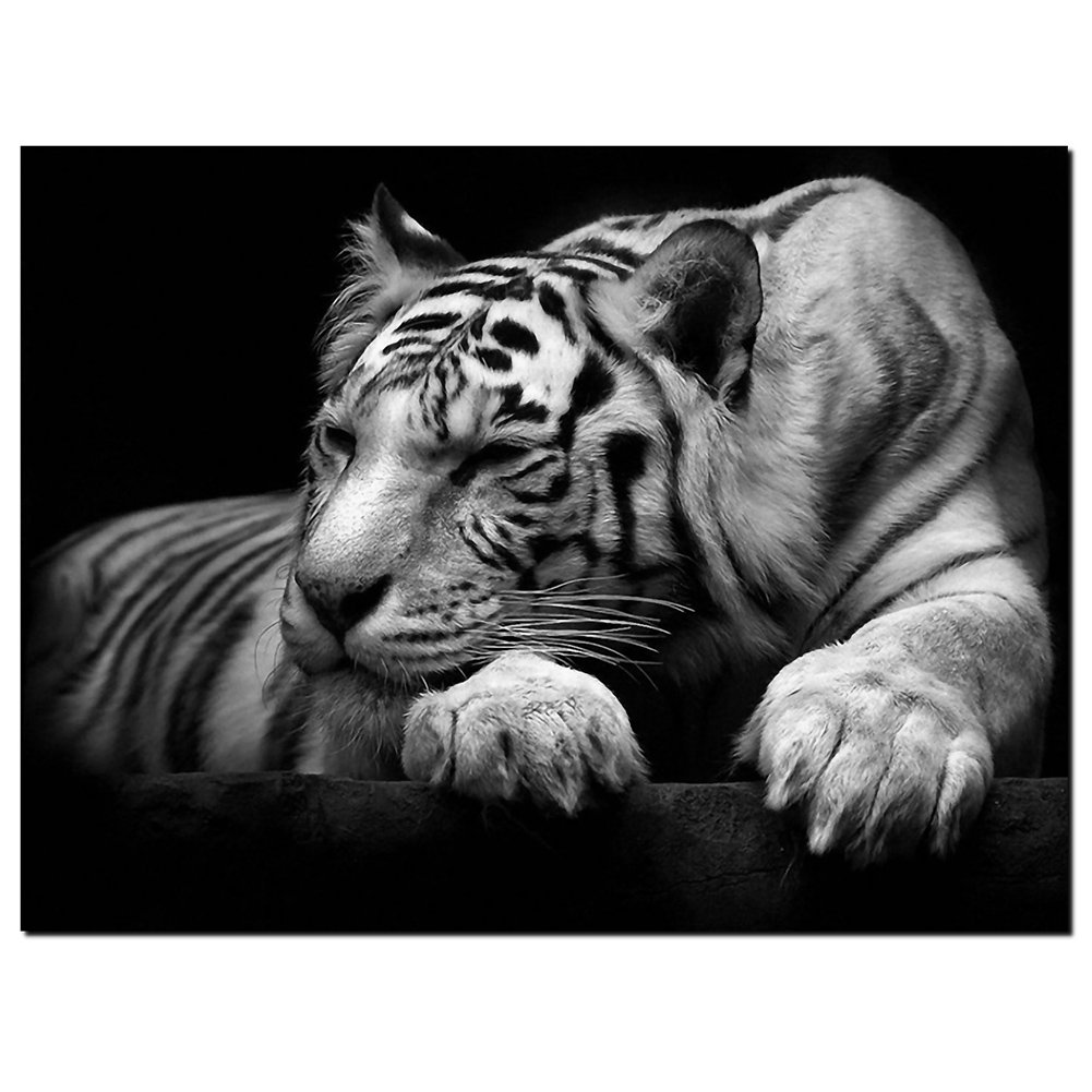 Goupsky new modern wildlife wall painting animal black and white tiger poster paint on canvas prints home decorative art picture