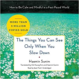 The Things You Can See Only When You Slow Down: How to Be Calm and