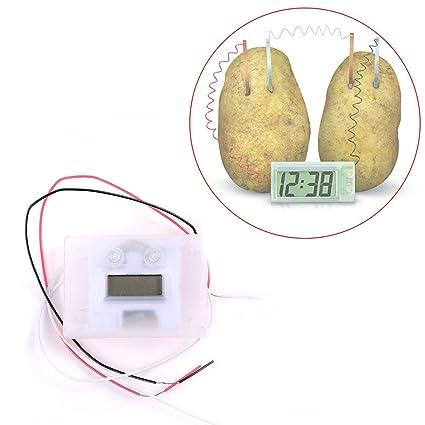 mAjglgE Kit de experimentos de proyectos de Ciencia y Reloj Digital de Patata, Suministros para