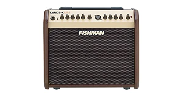 Fishman Loud Box Mini - Amplificador para guitarra acústica ...