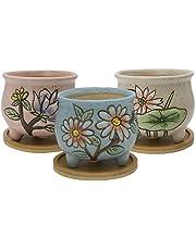 SQOWL 3 Piece White Ceramic Succulent Planter Pot