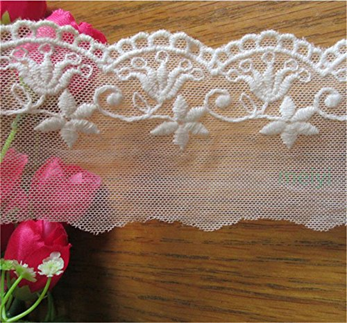 3 Meters Transparent Mesh Cotton Tulle Lace Edge Trim Ribbon 6 cm Width Vintage Style Off White Edging Trimmings Fabric Embroidered Applique Sewing Craft Wedding Bridal Dress DIY Decor Clothes Decor