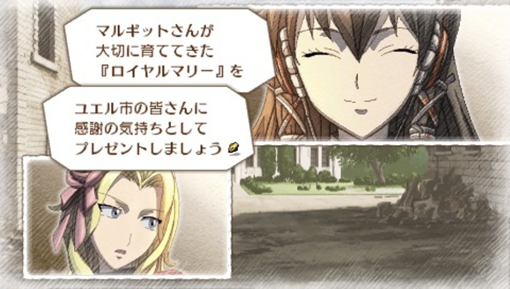 Valkyria Chronicles III: Unrecorded Chronicles (Extra Edition) [Japan Import] by Sega (Image #6)