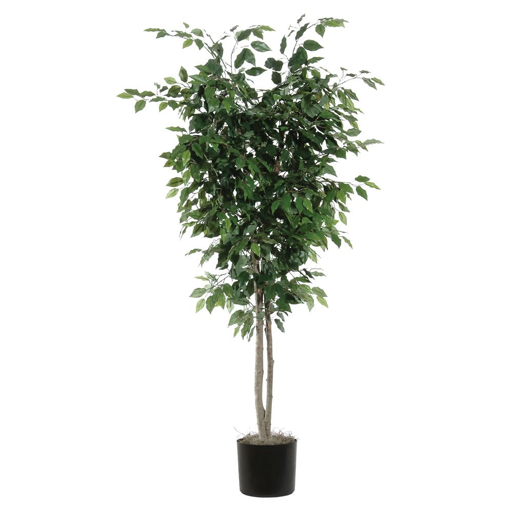 Vickerman TDX0160-07 Everyday Ficus Tree, Green, 6'
