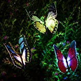 Garden Solar Lights Kearui Automatic Color Changing Butterfly Patio Solar Butterfly Stakes 3pieces Festival Decoration Butterfly Lights for Garden Lawn Best Christmas Gift Idea(Lighting Stakes)