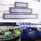 24 aquarium hood - AE-SHOP Aquarium Hood Lighting Fish Tank Light Blue and White Light 24-32 inch