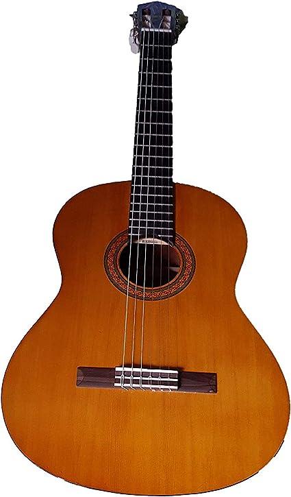 Yamaha CS40 – Guitarra clásica (incluye funda): Amazon.es ...