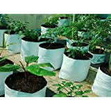 Casa De Amor Poly Grow Bags, Uv Treated, Perfect For Terrace/ Balcony/Any Small Space, Professional Looking White Outside, Black Inside, 20 Bags