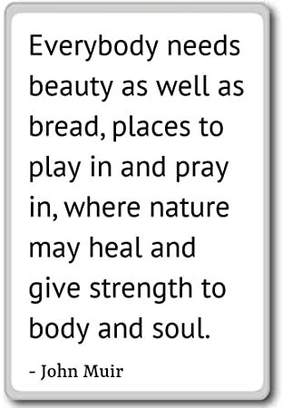 Amazon Everybody Needs Beauty As Well As Bread Places T