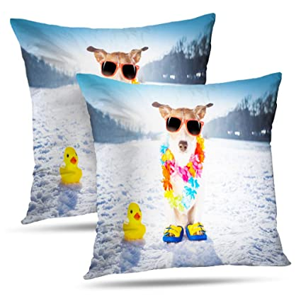 Cool Amazon Com Lalilo Set Of 2 Throw Pillow Coverscool Funny Cjindustries Chair Design For Home Cjindustriesco