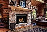 Black-Ash-Bucket-with-Lid-and-Shovel-For-Fireplace-Great-Wood-Stove-Ashes-Accessories