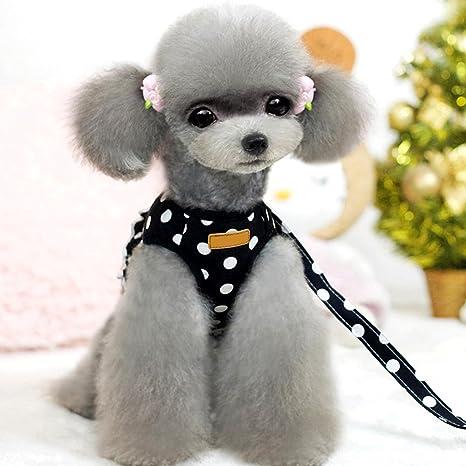 eizr arnés del perro con cuerda ajustable Arnés del Perro Pet ...