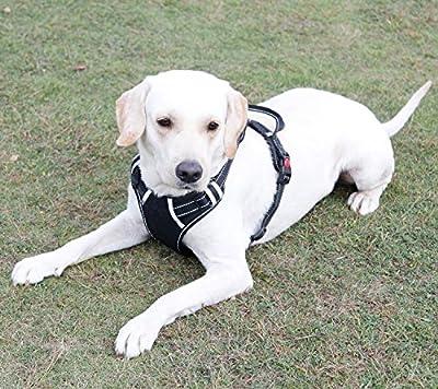 Menkar Dog Harness, No Pull Dog Harness, Front Range Dog Harness, Adjustable, Outdoor, Pet Vest, 3M Reflective, Oxford Vest for Dogs, Easy Control