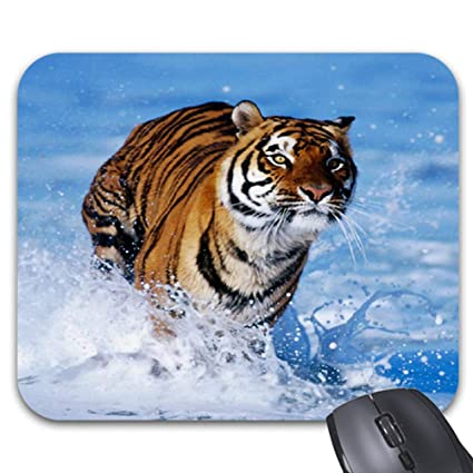 Amazon com : Cute and Awesome Tiger Mouse Pad Trendy Office Desk