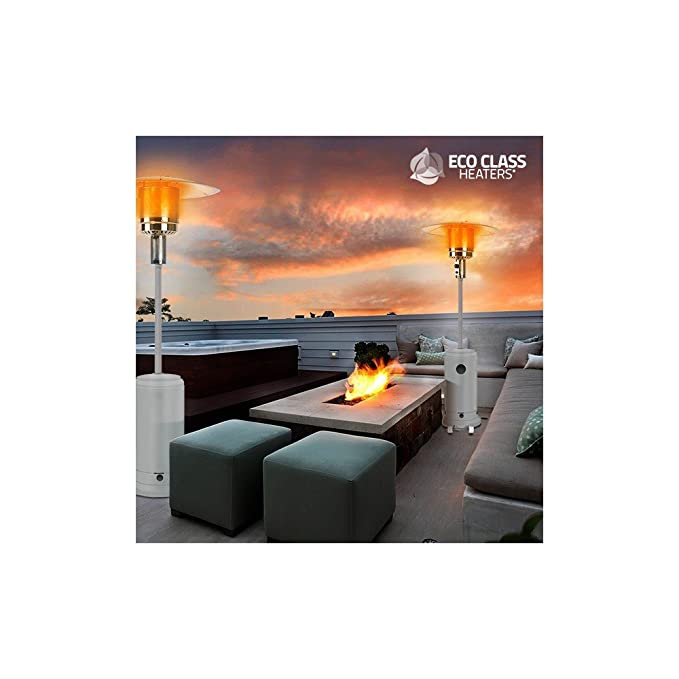 Thermic Dynamics Eco Class Heaters GH Estufa de Gas Exterior Gris 43x43x221 cm: Amazon.es: Jardín