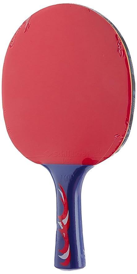 Buy Donic Schildkro T Young Champions 300 Raquette De Tennis De