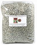 Nicaragua Arabica Unroasted Green Coffee Beans (10 LB)