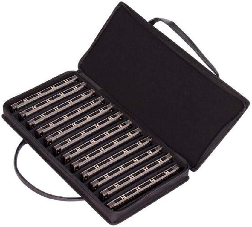 XHYRB ハーモニカ24穴セット12スペシャルセットハーモニカハーモニカQM24A 管楽器 (Color : Silver)